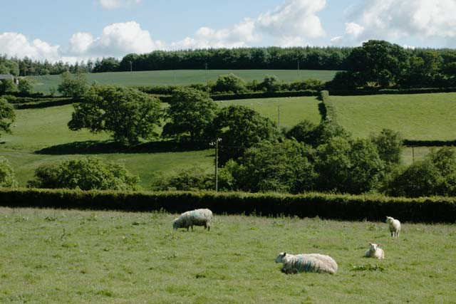 Grazing and Arable Land