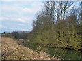 SE7465 : The River Derwent below Kirkham by Peter Church