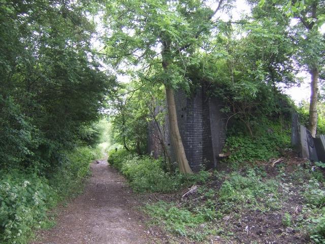Disused railway -Fibbersley Local Nature Reserve