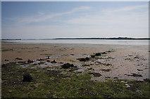 TM1633 : Holbrook Bay by Bob Jones