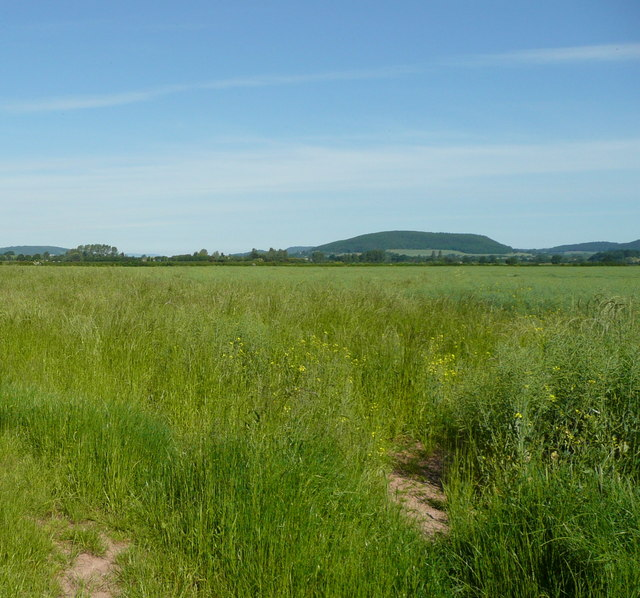 View west of Huntington Lane