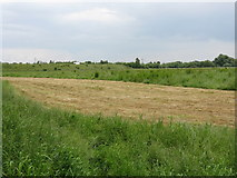 SO8252 : Fields at Lower Wick by Peter Whatley