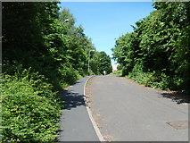 SO9596 : Railway Drive Bilston by Gordon Griffiths