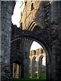 SO2827 : Llanthony Priory by trevor willis