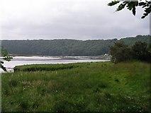 SM9611 : Little Milford on the West Cleddau by Shaun Butler