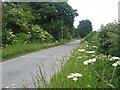 O1665 : Tobersool Lane, Co. Dublin by Kieran Campbell