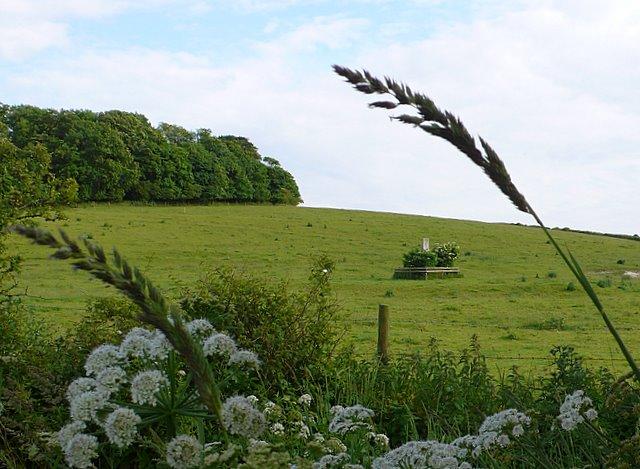 Winterbourne Farringdon