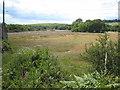SW7839 : Looking down the creek towards Devoran by Rod Allday