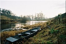 NT6929 : River Teviot near Roxburgh by Andrew Barclay