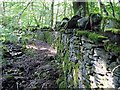 SN6806 : Dry stone wall in Cwm Clydach by Nigel Davies