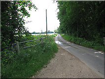TM0099 : View northeast along Little Ellingham Road by Evelyn Simak