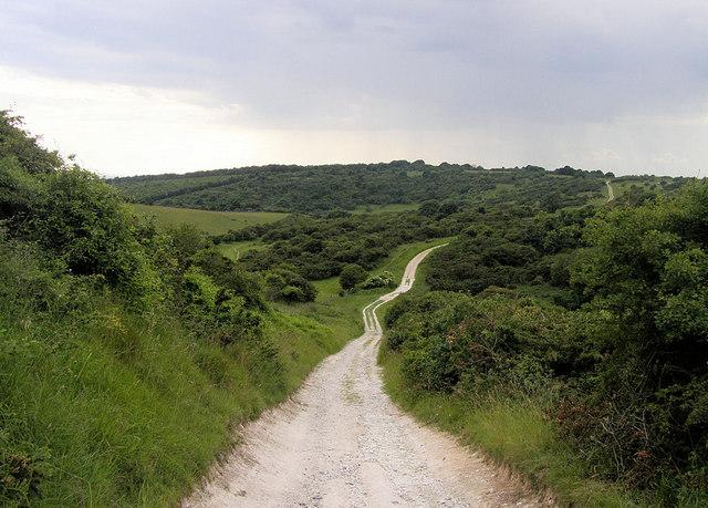 Footpath north of Lullington Heath, towards Jevington, East Sussex