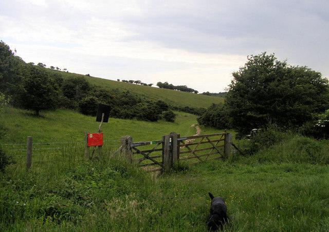 Footpath into Lullington Heath, East Sussex
