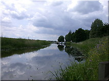 TL4097 : River Nene from under the Isle of Ely Way by Keith Edkins