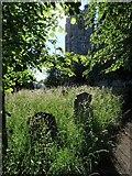 SX9193 : St David's churchyard, Exeter by Derek Harper