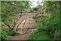 SO8383 : Sandstone rock at Kinver Edge by Mat Fascione
