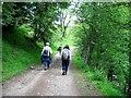 NY9075 : Track leading towards The Nursery by Roger Smith