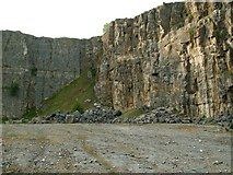 SK2076 : The NW Corner of Furness Quarry by John Fielding