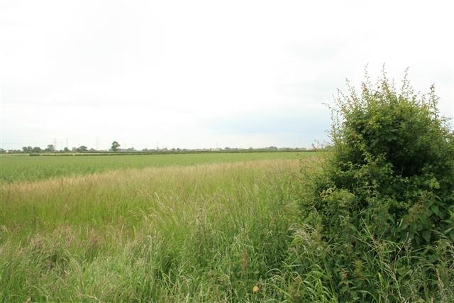Towards Laneham from Rampton Road