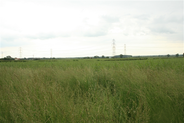 Farmland, Church Laneham (2)