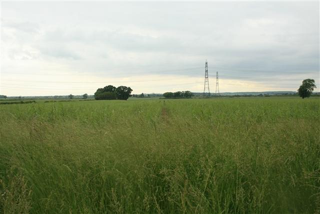 Farmland, Church Laneham (3)