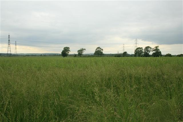 Farmland, Church Laneham (4)