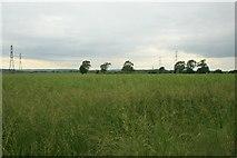 SK8177 : Farmland, Church Laneham (4) by Katy Walters