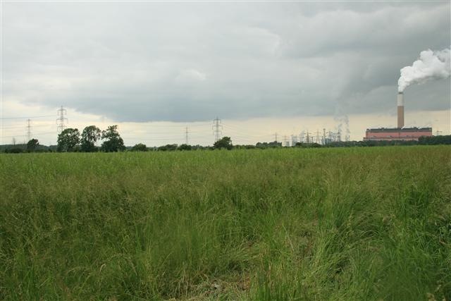 Farmland, Church Laneham (5)