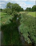 SK6515 : The River Wreake in Thrussington, Leicestershire by Mat Fascione