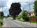 SU8882 : Gardner Road, Maidenhead by Andrew Smith