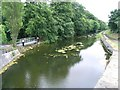 O0937 : Royal Canal Downstream of the 11th Lock, Castleknock, Co. Dublin by JP