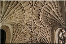 ST0207 : Cullompton: fan vaulting in St Andrew's church by Martin Bodman