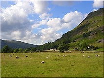 NY3915 : Pasture, Patterdale by Andrew Smith