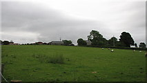 D0228 : Hillside farmhouses by Willie Duffin