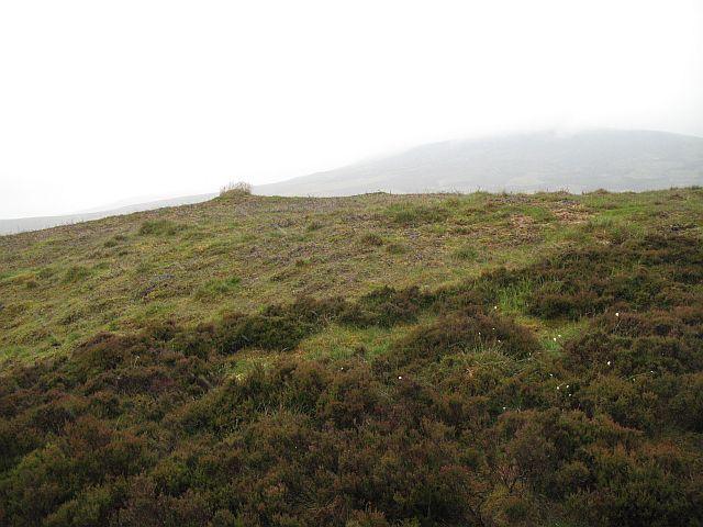Moorland above the Tarf Water