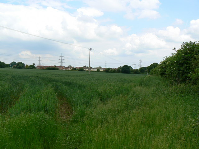 Typical Bramley Countryside