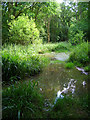 SU8526 : Pond, Lambourne Lane by Simon Carey
