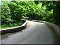 SM9724 : Triffleton Bridge by Shaun Butler