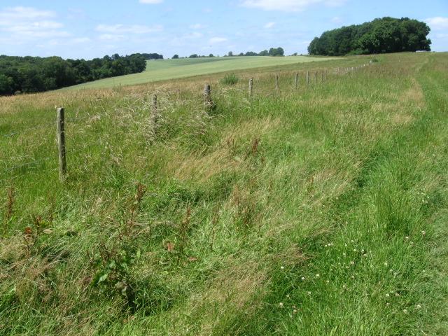 Farmland near Chilgrove