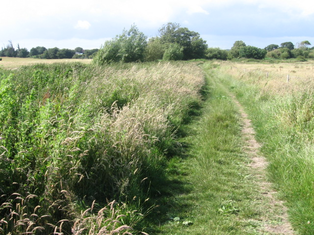 Footpath between Titchfield Canal and Titchfield Nature Reserve