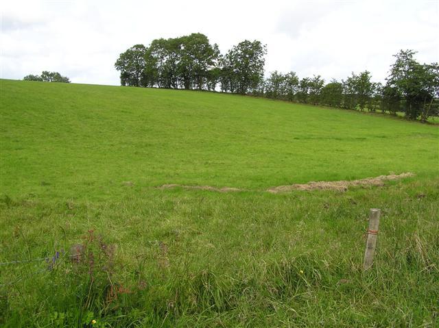 Pharis Hill