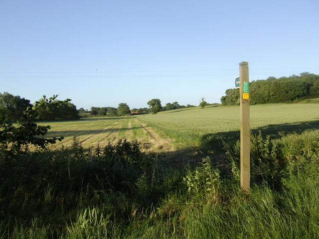 Footpath to the White Horse Sibton