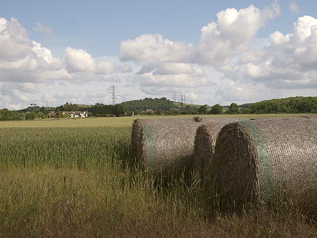 Farmland north of Church Lane
