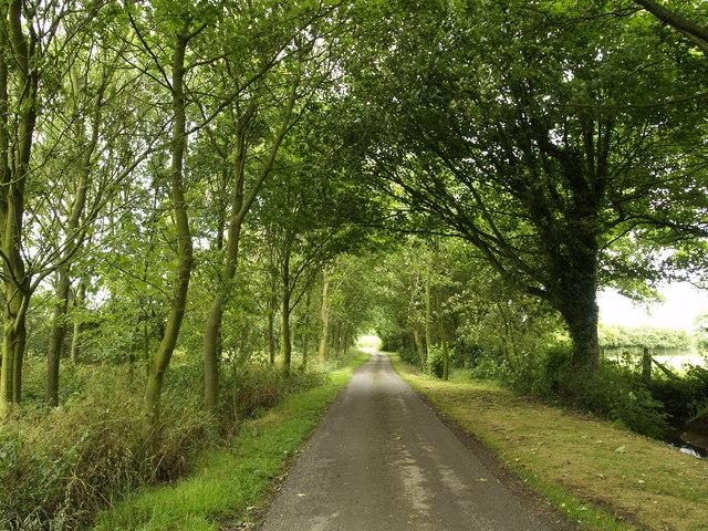 Country Lane near Frodingham Hall