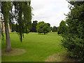 SE7824 : Saltmarshe Hall grounds by George Robinson