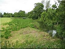 TL3949 : River Cam near Barrington by Nigel Cox