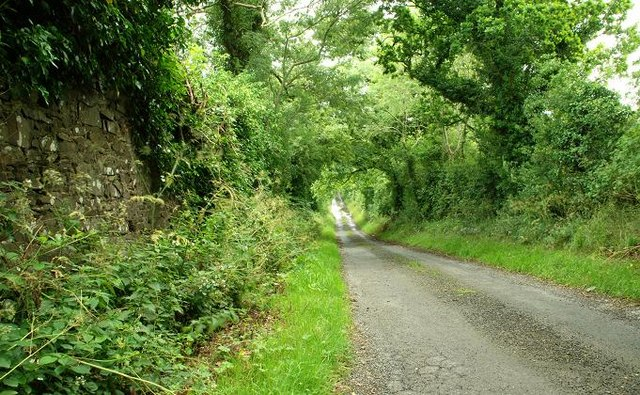 Lane near Hillsborough