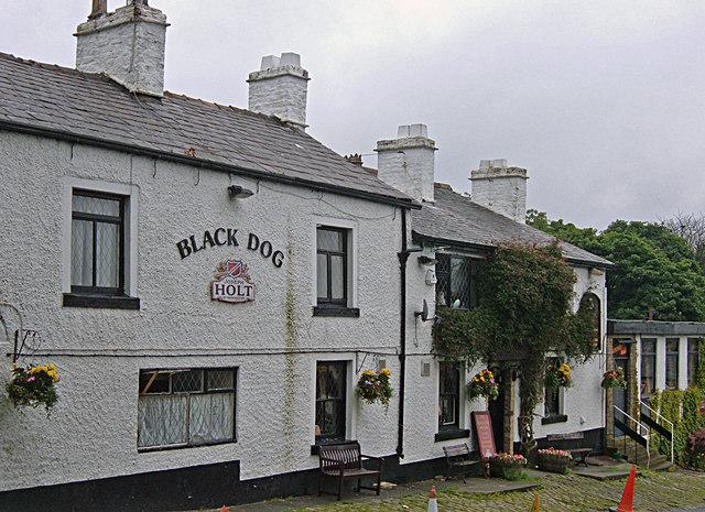 The Black Dog, Belmont