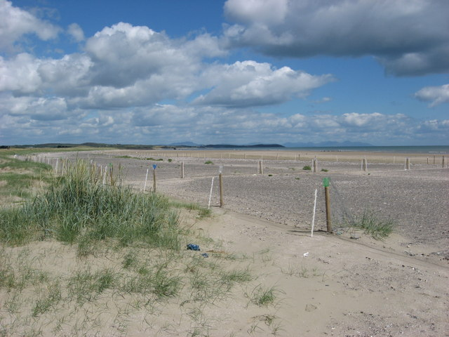 Little Tern nesting sites, Baltray, Co. Louth