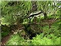 NS3463 : Stone footbridge by wfmillar
